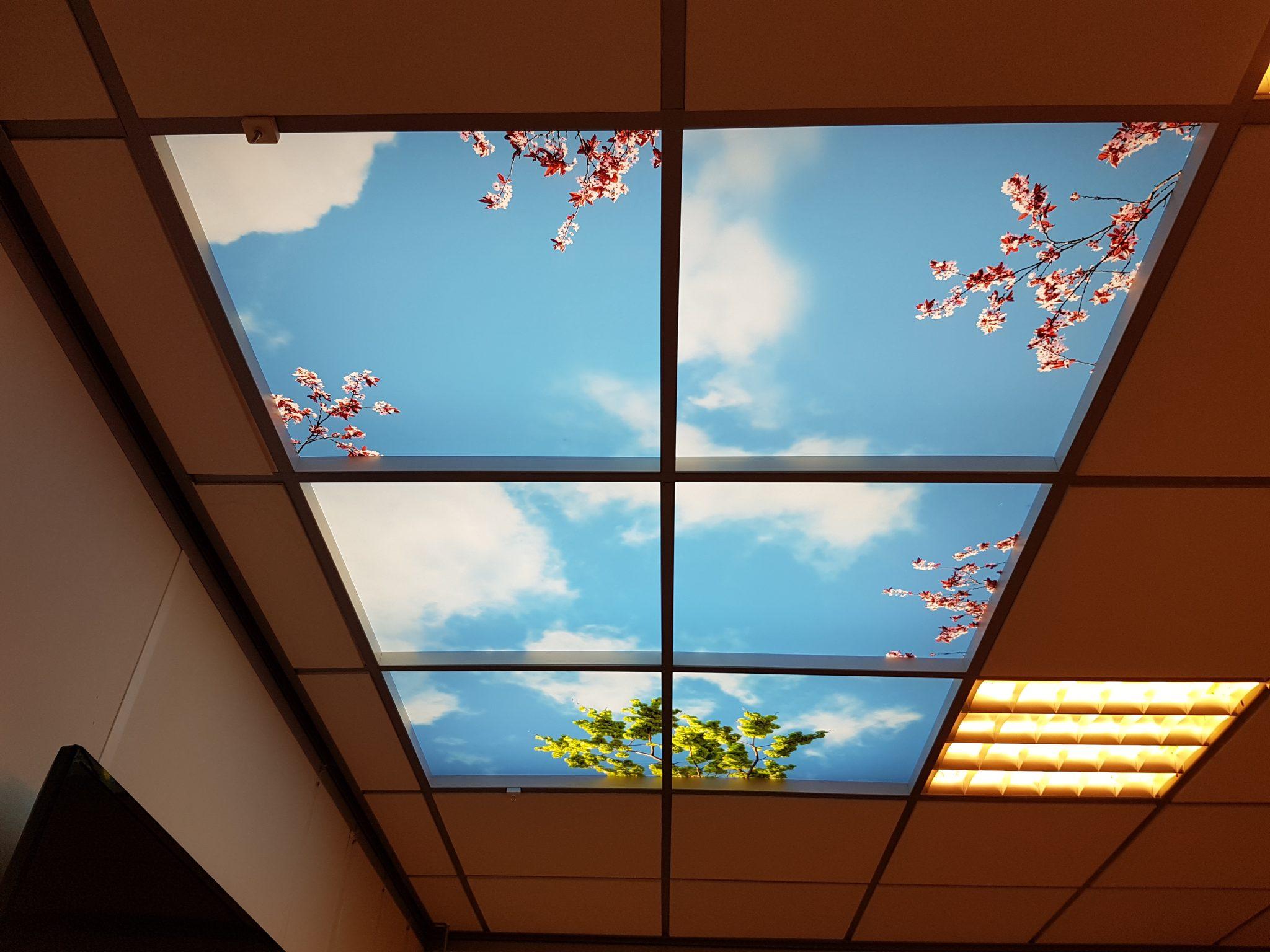 wolken plafond sensues